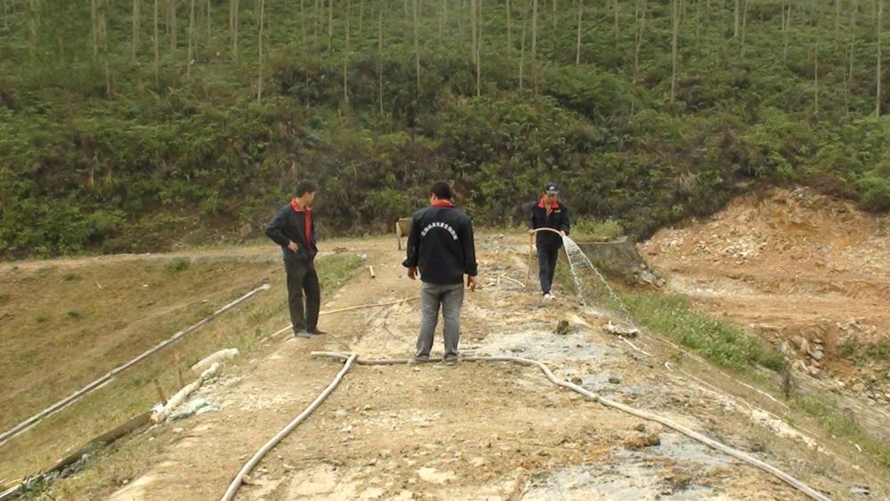 梁光旺:广东省水库大坝和河道堤防白蚁防治情况的普查